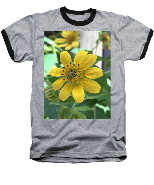 Yellow Flower Baseball T-Shirt by Kay Gilley
