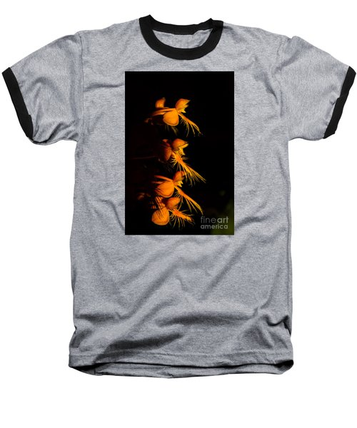Yellow-fringe Orchid Baseball T-Shirt