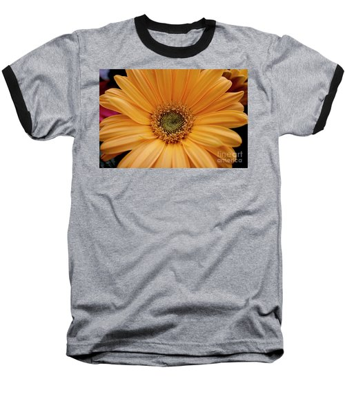 Yellow Gerbera Daisy Baseball T-Shirt by Ivete Basso Photography