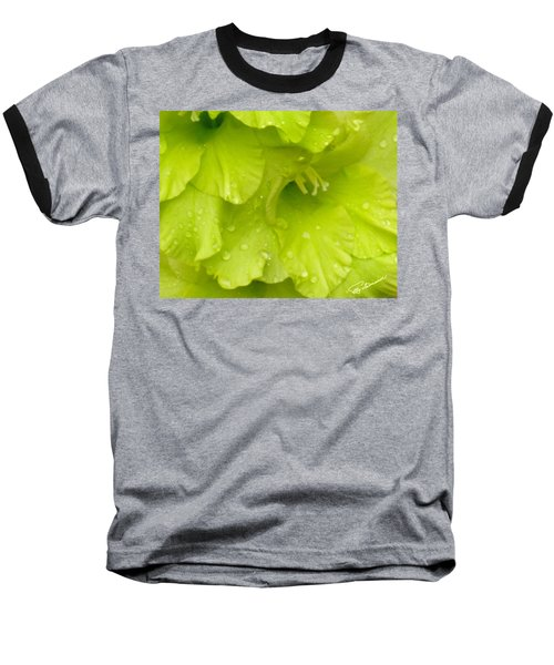 Yellow Gladiola Refreshed Baseball T-Shirt