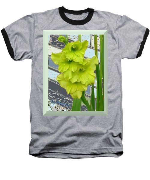 Yellow Gladiolas Baseball T-Shirt