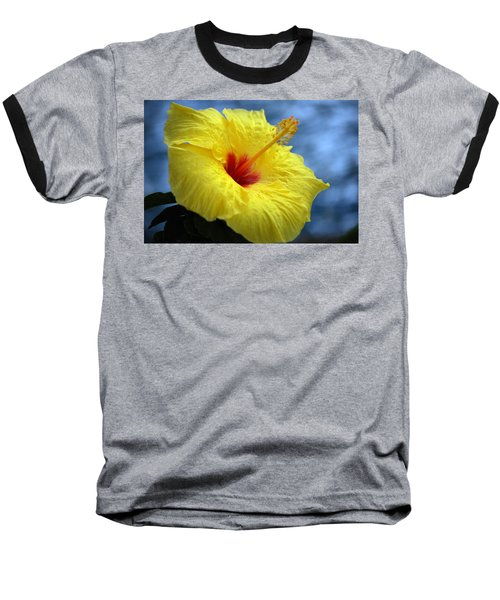 Baseball T-Shirt featuring the photograph Yellow Hibiscus by Debbie Karnes