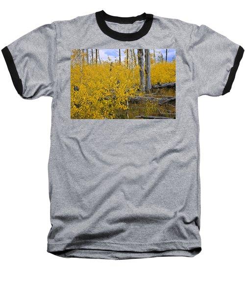 Yellow In Grand Teton Baseball T-Shirt