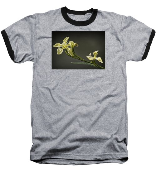 Yellow Iris Baseball T-Shirt by Shirley Mitchell