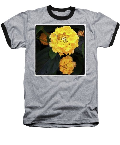Baseball T-Shirt featuring the photograph Yellow Lantanas Along The Scenic Drive by Mr Photojimsf