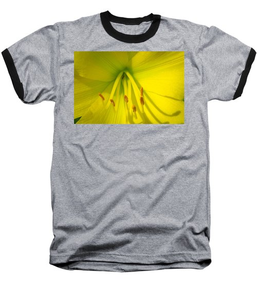 Yellow Lily Macro Baseball T-Shirt by Bruce Pritchett