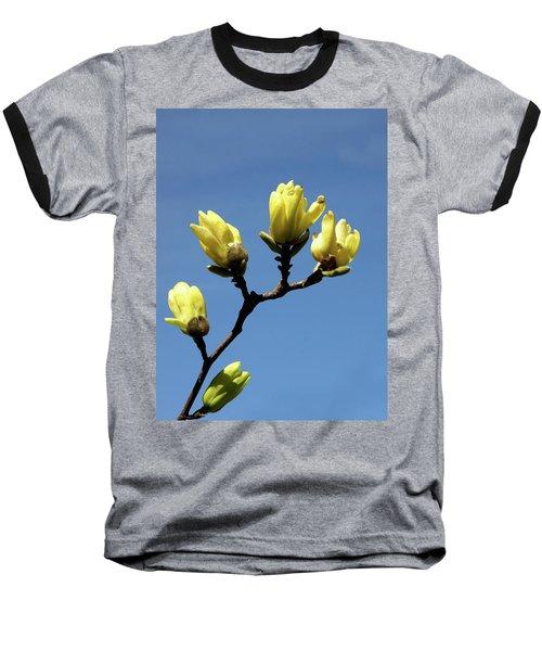 Yellow Magnolia Baseball T-Shirt