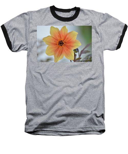 Yellow Orange Dahlia Perfection Baseball T-Shirt