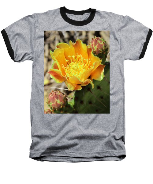 Yellow Prickly Pear Cactus Baseball T-Shirt