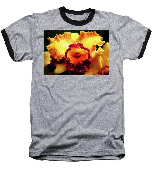 Yellow-purple Orchid Baseball T-Shirt