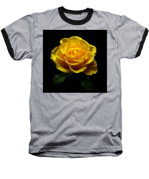 Yellow Rose 4 Baseball T-Shirt