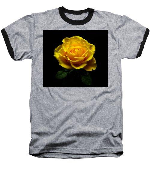 Yellow Rose 4 Baseball T-Shirt