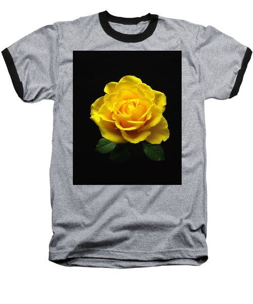 Yellow Rose 6 Baseball T-Shirt