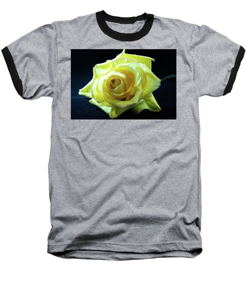 Yellow Rose-7 Baseball T-Shirt