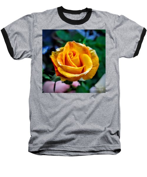 Baseball T-Shirt featuring the photograph Yellow Rose by Garnett Jaeger