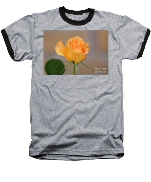 Yellow Rose Of Texas Baseball T-Shirt by Joan Bertucci