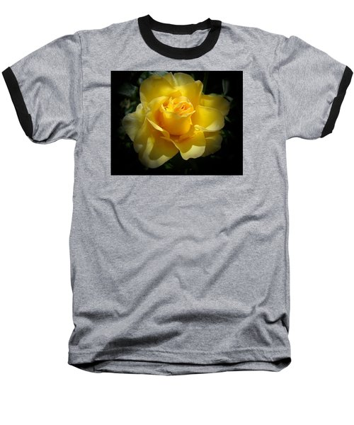 Yellow Rose Baseball T-Shirt by Veronica Rickard