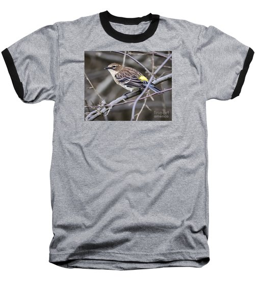 Baseball T-Shirt featuring the photograph Yellow-rumped Warber In Fall Colors by Ricky L Jones