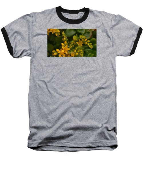 Yellow Sedum Baseball T-Shirt