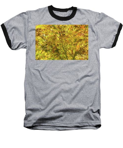 Yellow Spring Baseball T-Shirt by Iris Greenwell