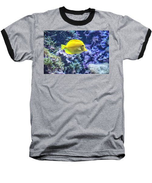 Yellow Tang Baseball T-Shirt