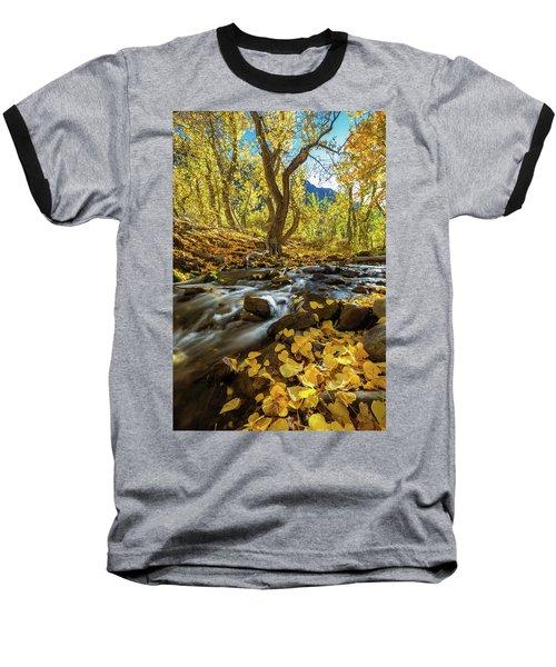Yellow Baseball T-Shirt by Tassanee Angiolillo