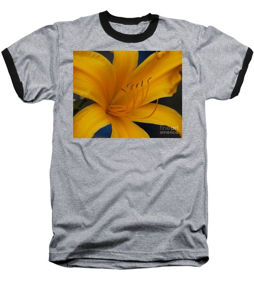 Yellow Tiger Lilly Baseball T-Shirt