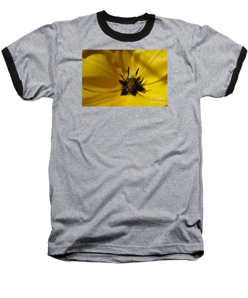 Yellow Tulip 1 Baseball T-Shirt