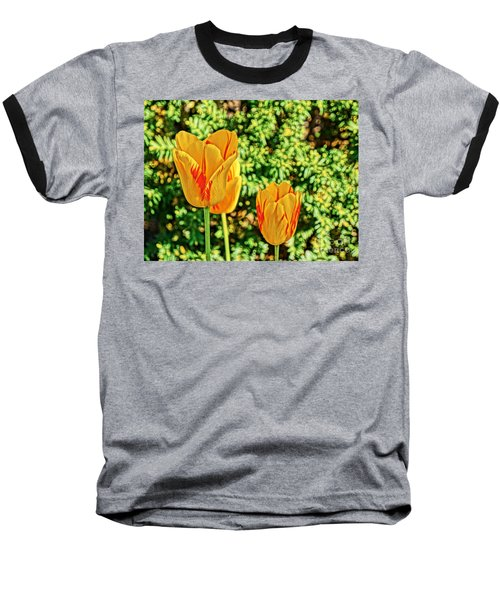 Yellow Tulip  Baseball T-Shirt