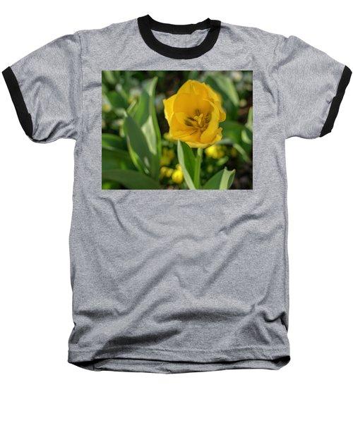 Yellow Tulip Baseball T-Shirt