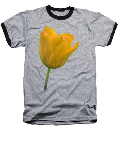 Yellow Tulip Open On Black Baseball T-Shirt by Gill Billington