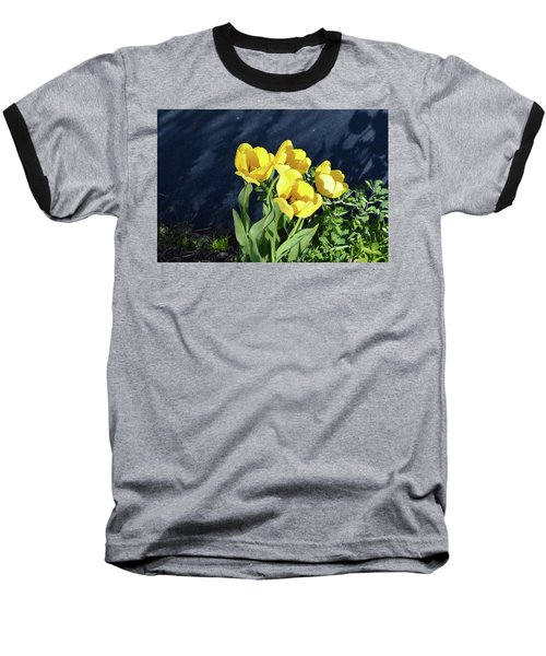 Yellow Tulips Baseball T-Shirt by Kathleen Stephens