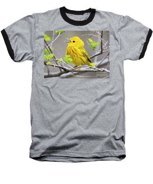 Yellow Warbler  Baseball T-Shirt by Ricky L Jones