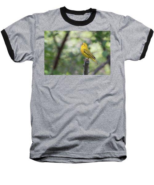Yellow Warbler In Song Baseball T-Shirt