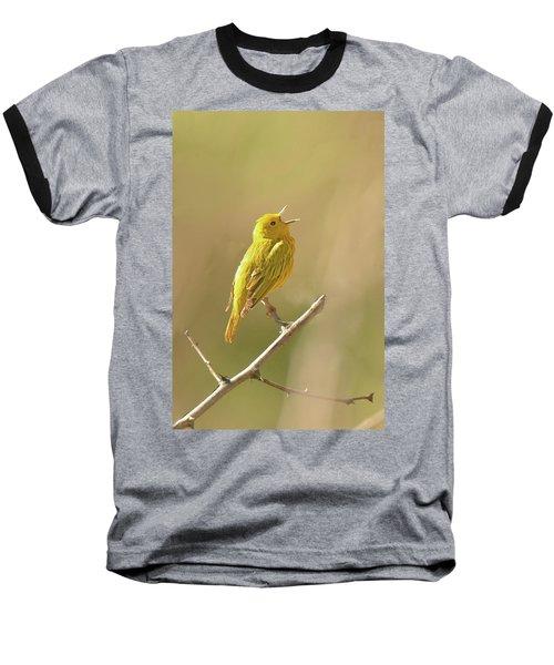 Yellow Warbler Song Baseball T-Shirt by Alan Lenk