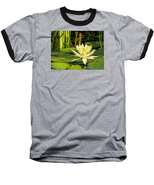 Yellow Water Lily Baseball T-Shirt