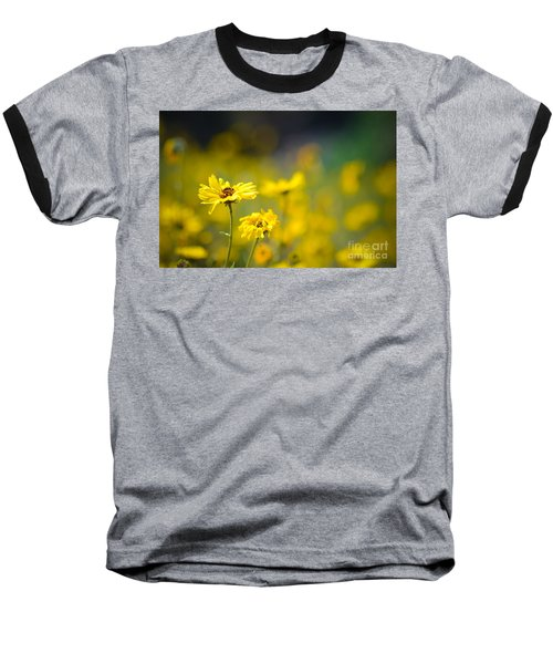 Baseball T-Shirt featuring the photograph Yellow Wild Flowers by Kelly Wade