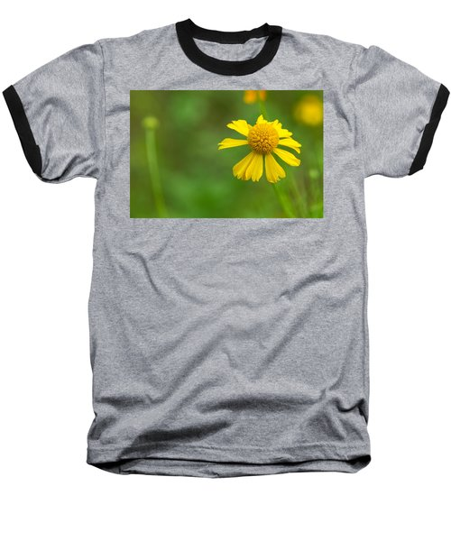 Yellow Wildflower Baseball T-Shirt by Christopher L Thomley