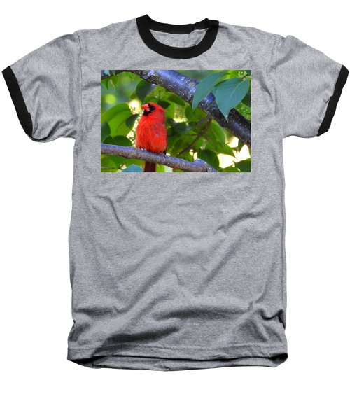 Baseball T-Shirt featuring the photograph Yes I'm Listening by Betty-Anne McDonald