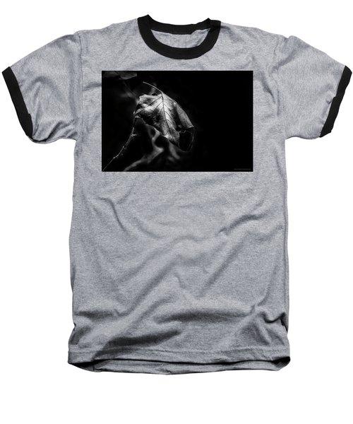Yet Beauty Will Move On Baseball T-Shirt