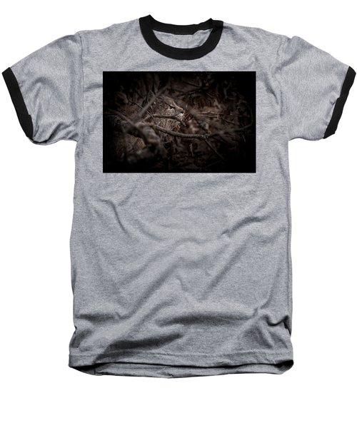 Yosemite Bobcat  Baseball T-Shirt by Ralph Vazquez