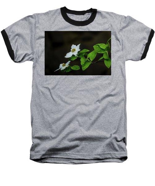 Yosemite Dogwoods Baseball T-Shirt
