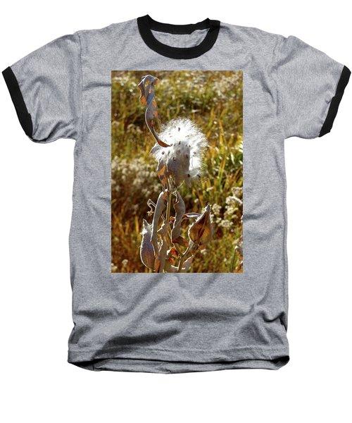 Yosemite Milkweed Baseball T-Shirt
