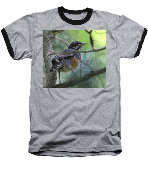 Young American Robin Setauket New York Baseball T-Shirt by Bob Savage
