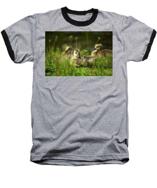 Baseball T-Shirt featuring the photograph Young And Adorable by Karol Livote