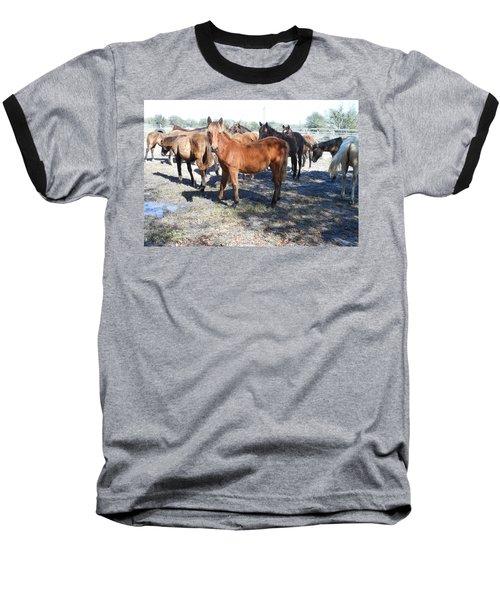 Young Cracker Horses Baseball T-Shirt