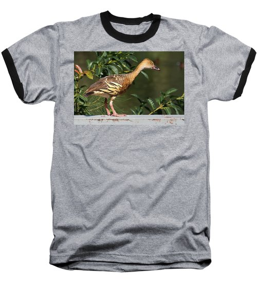 Young Duck Baseball T-Shirt
