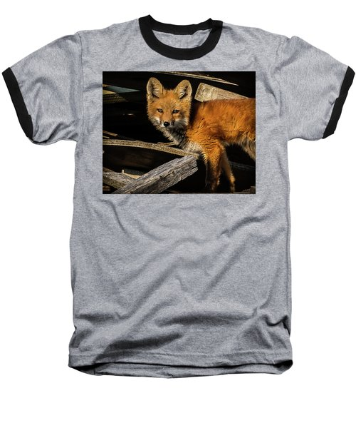 Young Fox In The Wood Baseball T-Shirt