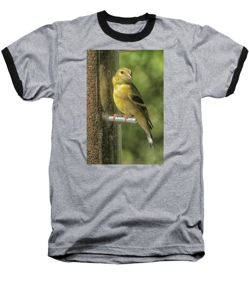 Baseball T-Shirt featuring the photograph Young Goldfinch by Constantine Gregory