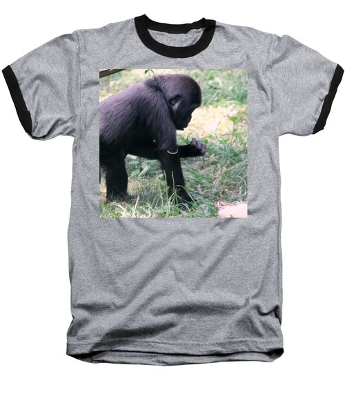Young Gorilla Baseball T-Shirt by Laurel Talabere